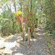 Es un área protegida y atractivo turístico más importante de la región sur del país; está ubicada en el límite de las provincias Loja y Zamora Chinchipe. La declaratoria del […]
